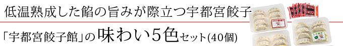 宇都宮餃子館の味わい5色セット