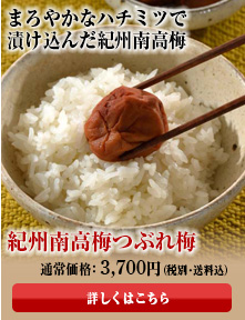 紀州南高梅 つぶれ梅 はちみつ【極低塩】2kg